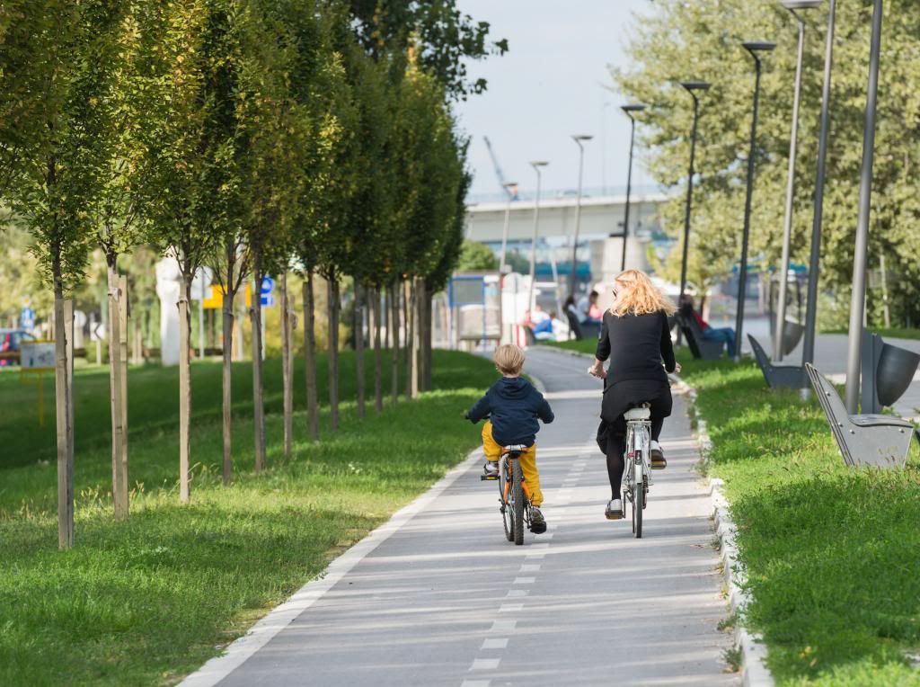 Cycling Vacation Spots for the Family that Rides