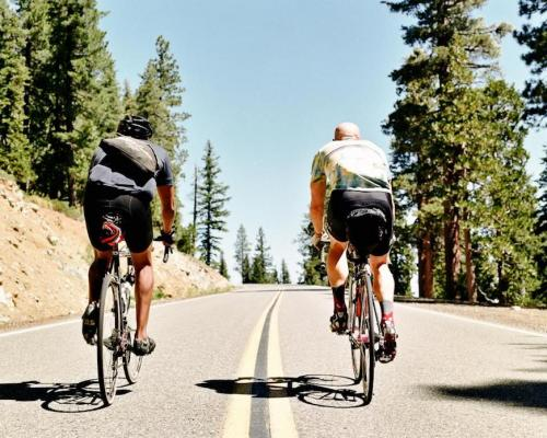 The Brovet: A Cycling Guide Brought to Life